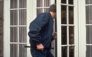French Door Burglar
